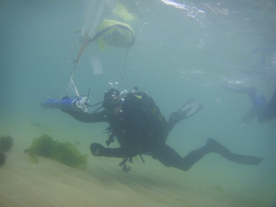 Tony swimming part of the artificial reef out with a lift bag