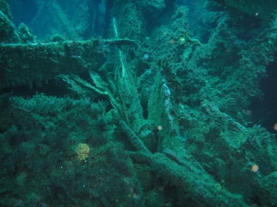 Wreckage of the Maori