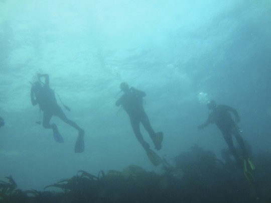 Divers descending on the Boss 400
