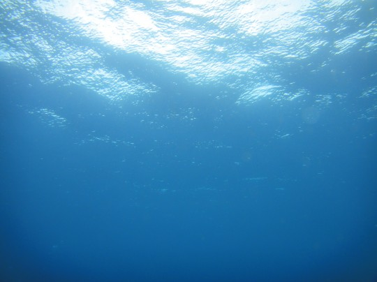 Looking up in the clear Atlantic