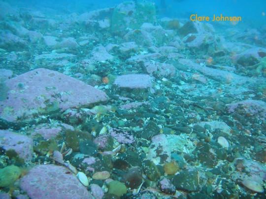 Flat ocean bottom around the wreck