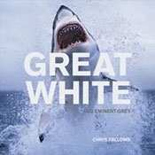 Great White, Eminent Grey
