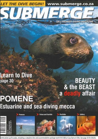 Submerge (February/March 2011)