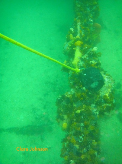 Shot line on the side of the wreck