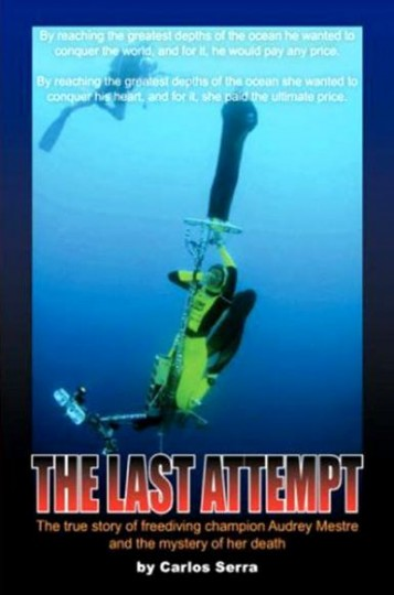 Bookshelf: The Last Attempt / The Dive