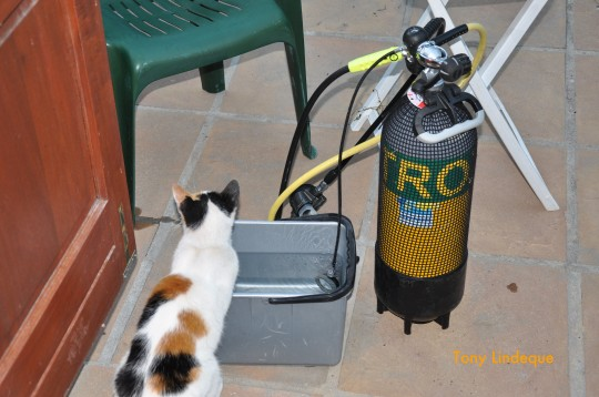 Smacker monitors the testing of a leaky gauge