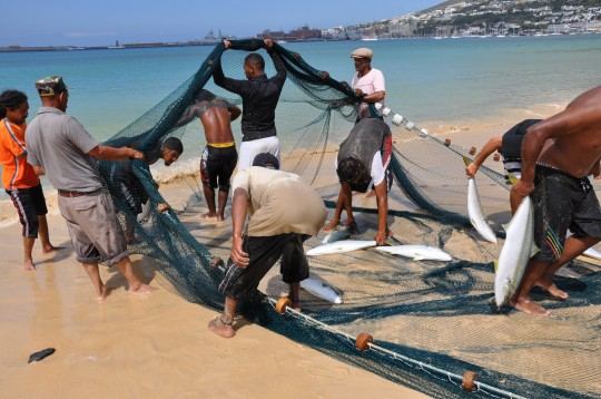 Emptying the net