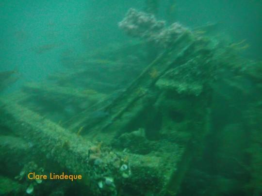 Newsletter: Wreck diving
