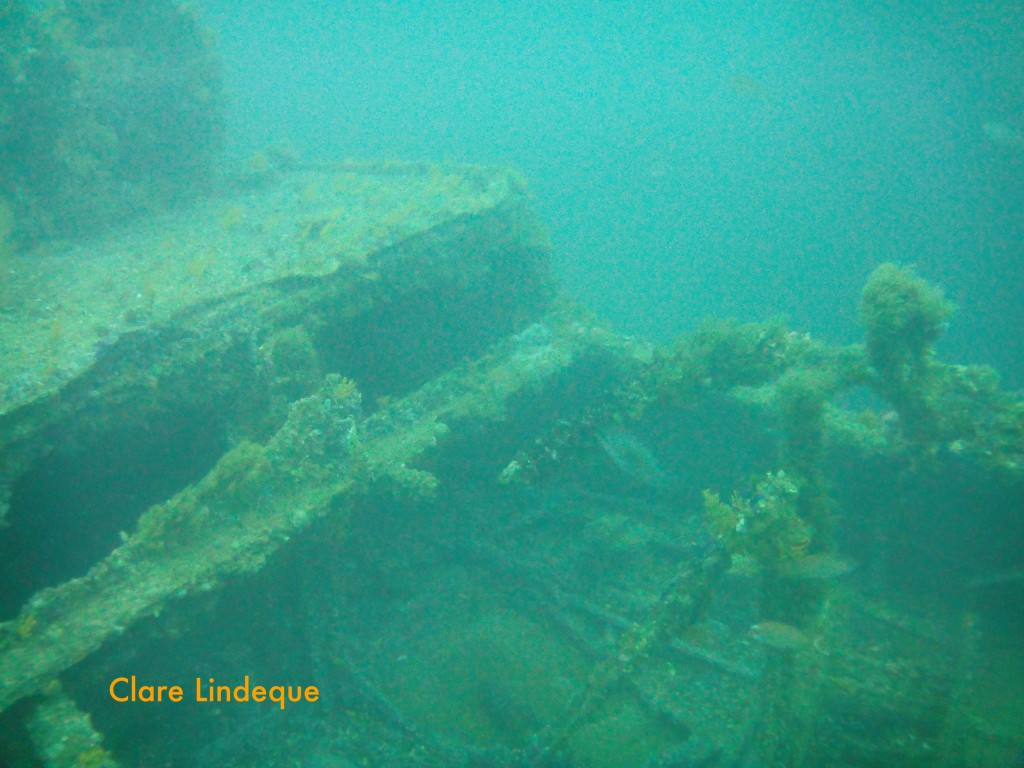 Wreckage of the SAS Good Hope