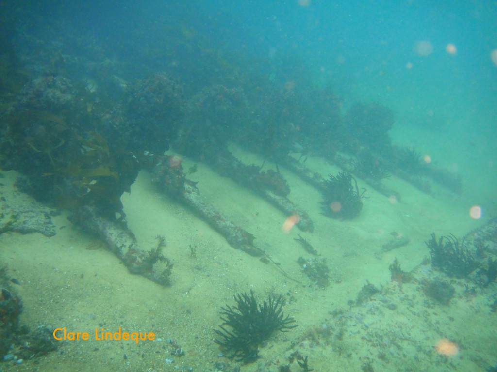 View down the inside of the wreck