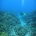 Swimming along a gully