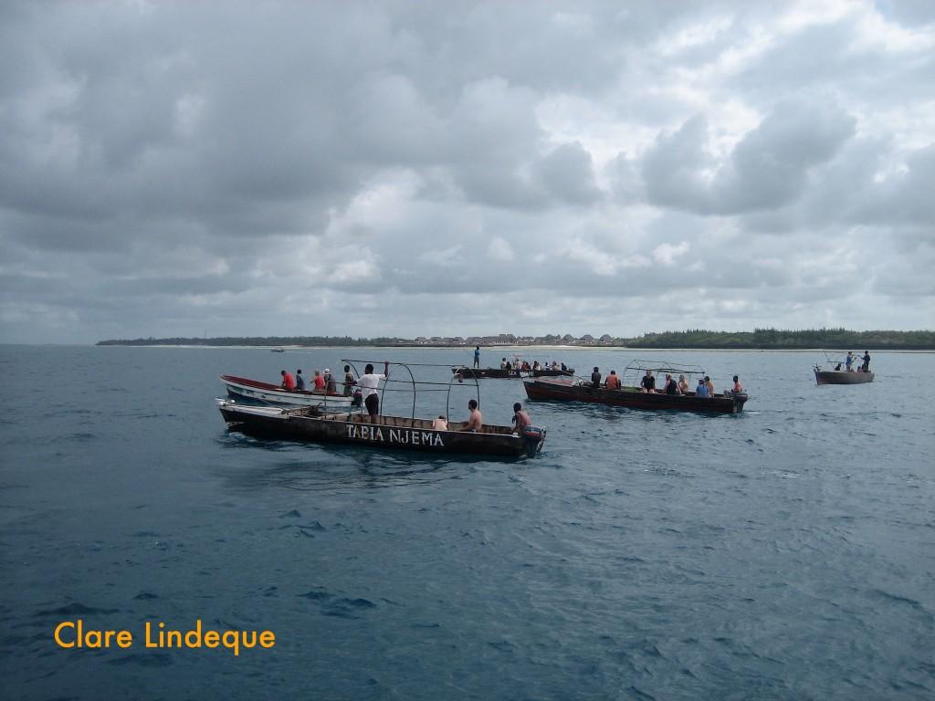 Dolphin boats off Kizimkazi, Zanzibar