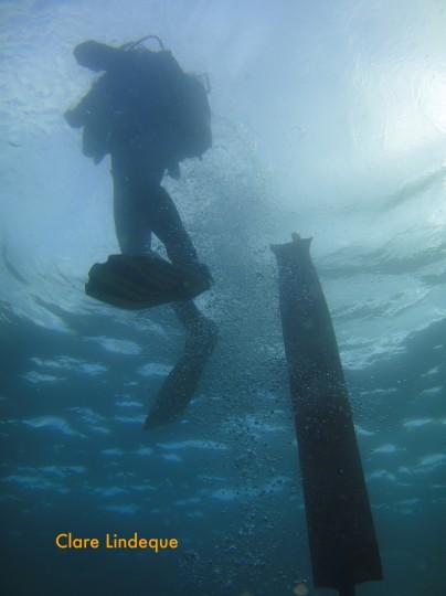 Diver ascending past an SMB