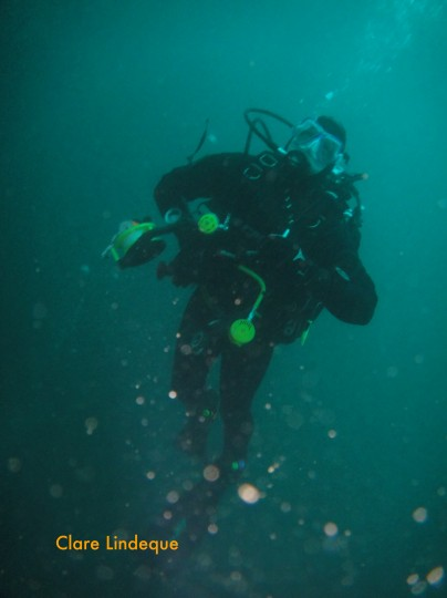 Cecil doing his first deep dive in a drysuit