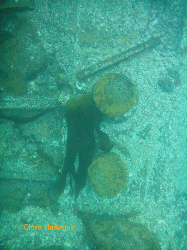 Looking down off the wreck at some bollards