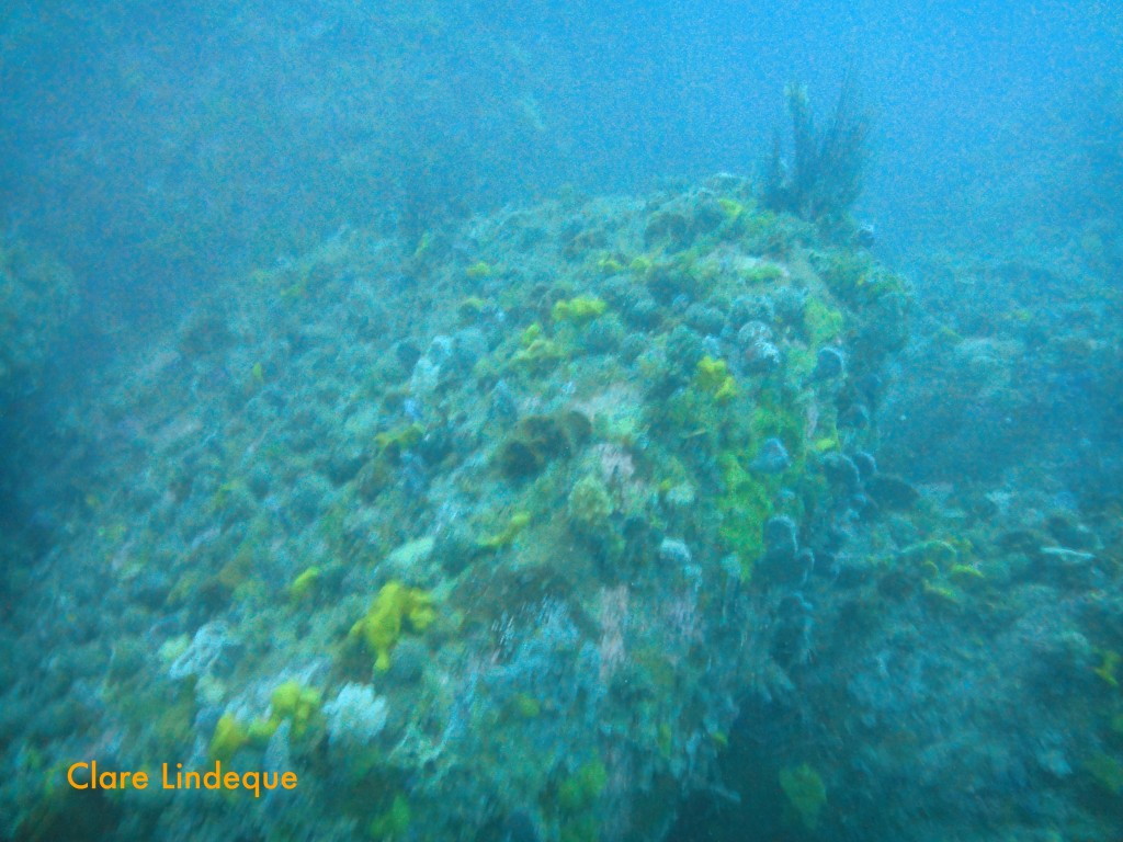 Rocky reef on which the SS Lusitania is lying
