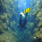 Tony negotiating a crevass in the reef