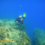 Tony swims by a crack in the limestone reef
