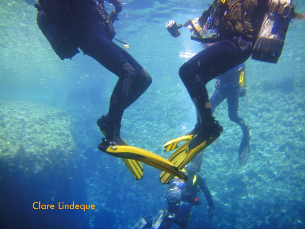 DIvers on the surface of the Blue Hole