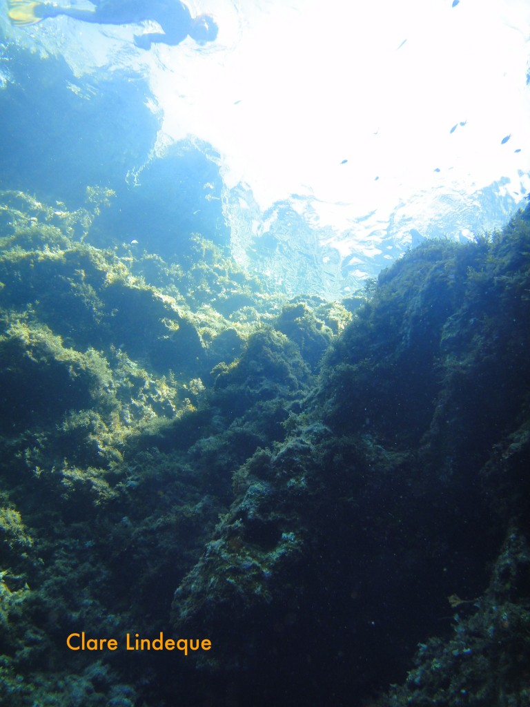 The surface and walls of the Blue Hole