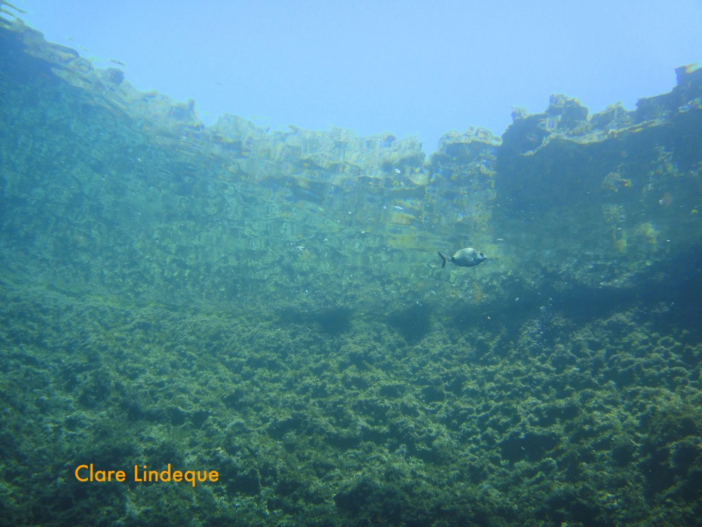 The rim of the Blue Hole