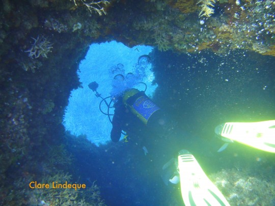 Tony checking out one of the many holes and swimthroughs on the reef