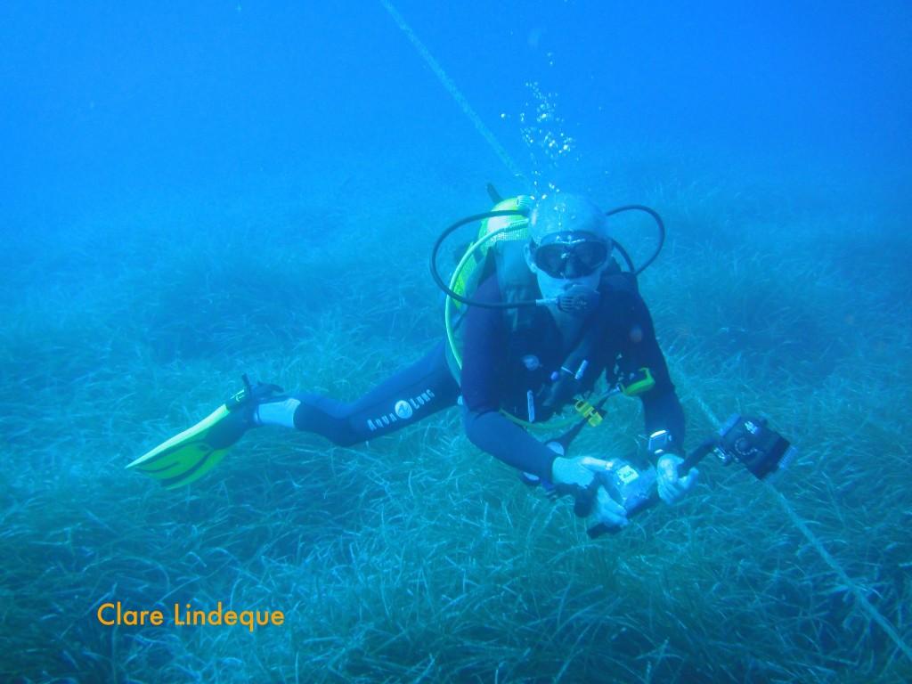 Tony passes over sea grass near the buoy line