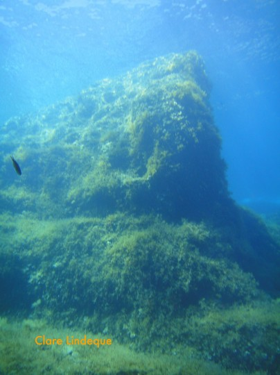 A pinnacle in shallow water