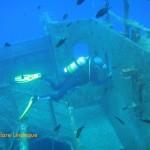 Tony investigates the interior of the wreck