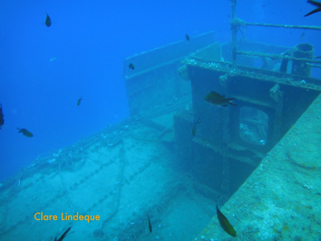 The wreck is home to schools of damselfish