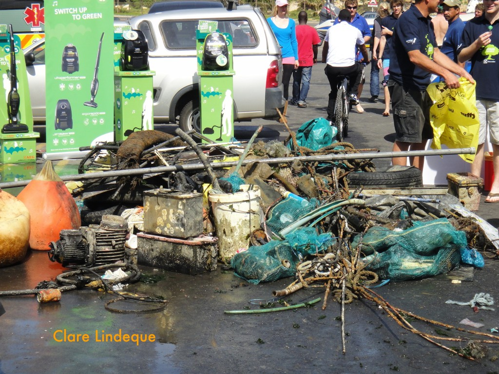 Some of the garbage that was retrieved from the harbour