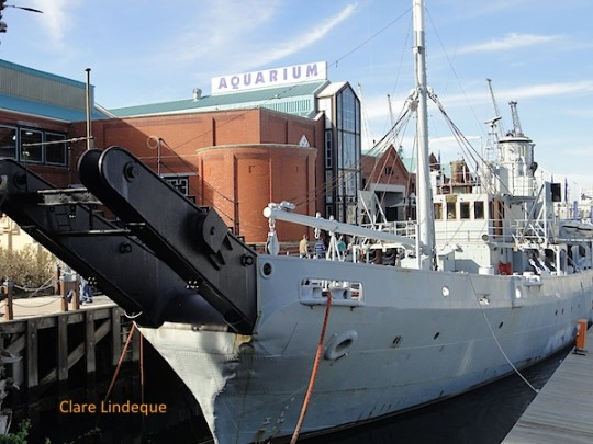 View of the SAS Somerset at anchor in the V&A Waterfront