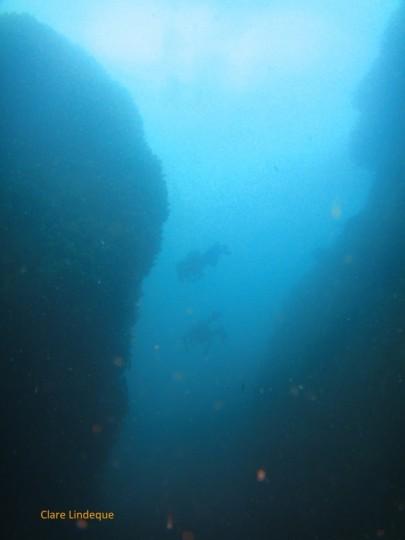 Divers pass between the pinnacles
