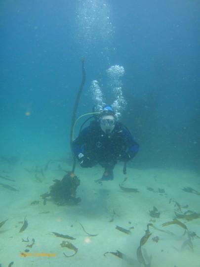 Linda traverses the seafloor