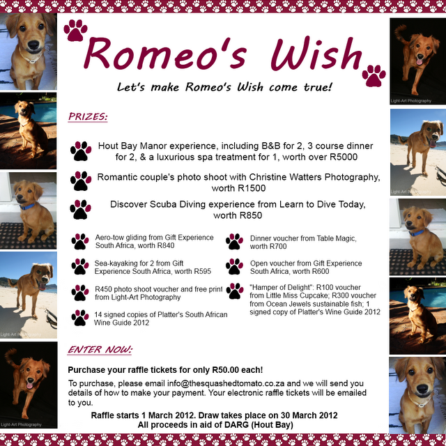 Supporting Romeo's Wish