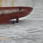 The rudder and propellor sustained some damage in the grounding