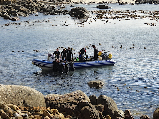 Divers climb off the Indigo Scuba boat at the slip