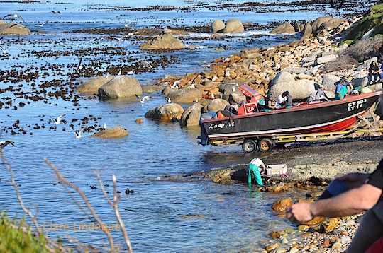 Snoek fishermen being charming