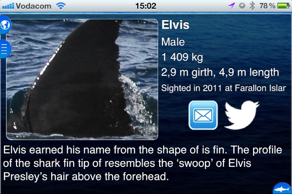 Each tagged shark has a bio and photograph included in the app