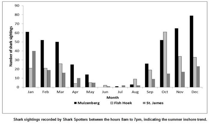 Seasonal trends in shark sightings over the last 6 years