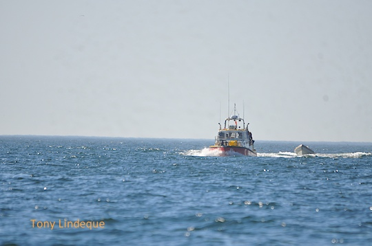 The NSRI towing a small rubberduck