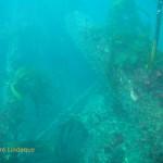 SS Oakburn wreckage