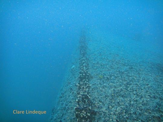 The keel of the Katsu Maru