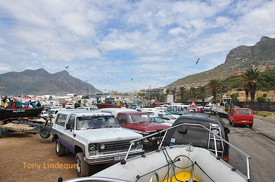 The parking area at Hout Bay during the snoek run