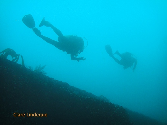 Swimming along the hull