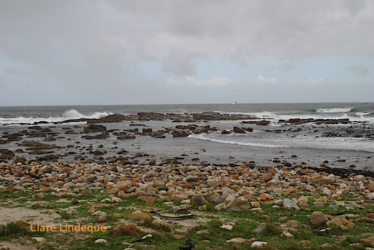 Cape Point Nature Reserve, lashed by rain