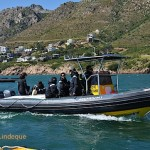 The aquarium boat heading out of Gordon's Bay