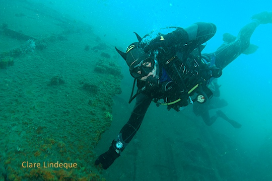 Dive sites (Durban): Fontao