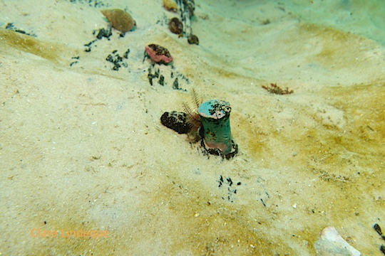Much of the wreck lies under the sand