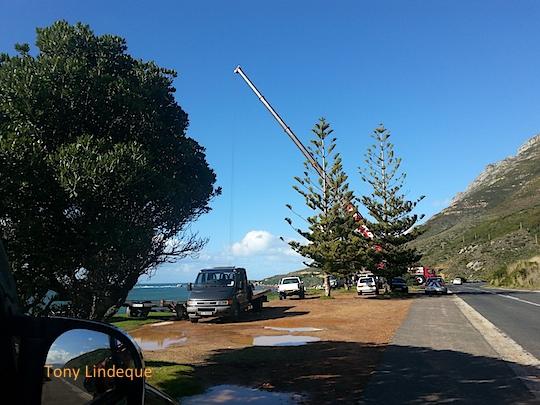 The crane at work